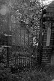 Cancello scuro Fotografia Stock Libera da Diritti