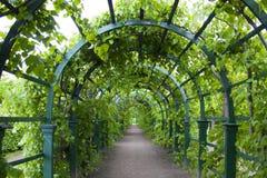 Cancello verde Immagini Stock