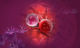 Cancer cell Stock Photos