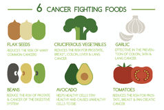 6 Cancer fighting foods. Illustrator Vector Royalty Free Stock Images