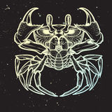 Cancer. Linear drawing on nightsky background. Cancer. Accurate symmetrical drawing of the beach crab on the black night sky background with stars. Concept art Stock Photography