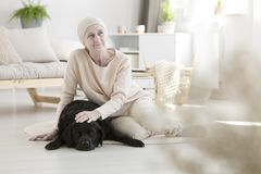 Cancer patient undergoing pet therapy. Cancer patient undergoing innovative pet therapy at home Stock Photography