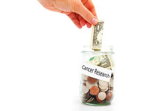 Cancer Research. Hand putting a dollar into a Cancer Research jar Royalty Free Stock Image