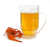 Cancer River&beer Stock Images