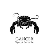Cancer zodiac. Signs of the zodiac. Cancer hand draw. Black silhouette and white details. Vector illustration isolated on a white background Stock Photography