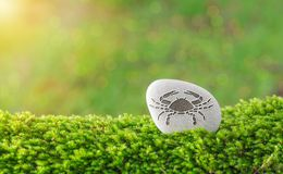 Cancer zodiac symbol in stone. On grass with nature bokeh light background stock photography