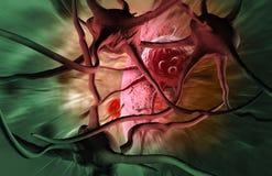 Cancercell vektor illustrationer