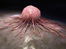 Cancercell Arkivbild