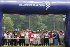cancerlivstidsrace Royaltyfri Bild