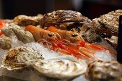 Cancers avec des huîtres en glace photographie stock