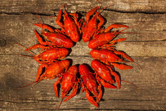Free Cancers To Beer, Boiled Crawfish, Beer Snacks Royalty Free Stock Photos - 68396578