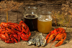 Cancers to beer, boiled crawfish, beer snacks Stock Photos