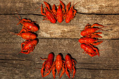 Cancers to beer, boiled crawfish, beer snacks Stock Photography