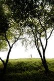Canción del verano en una colina Foto de archivo