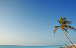 Cancun Stock Afbeeldingen
