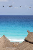Cancun Royalty Free Stock Photography