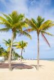Cancun beach Royalty Free Stock Photo