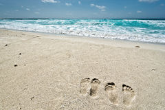 Cancun. Beautiful Cancun beach in Mexico Royalty Free Stock Photography