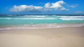 Cancun delfinesstrand i karibisk Riviera Maya stock video