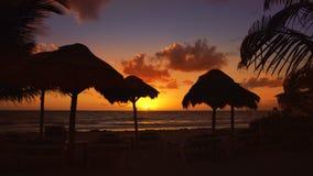 Cancun delfinesstrand i karibisk Riviera Maya lager videofilmer