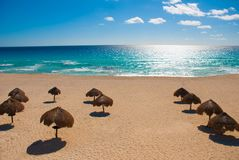 Cancun Mexico Delfines beach tropical in Caribbean. Exotic Paradise stock images