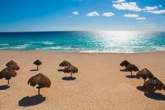 Cancun Mexico Delfines strand som är tropisk i karibiskt arkivbilder