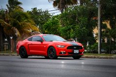 Ford Mustang. Cancun, Mexico - June 3, 2017: Sportscar Ford Mustang in the city street royalty free stock photo