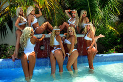 CANCUN, MEXICO - MAY 05: Models Pose Outside For White T-shirt Project Stock Images