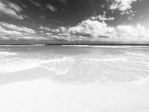 Cancun sea in black and white. Isla blanca, quintana roo mexico Stock Images
