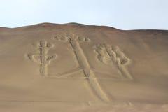 Candélabres des Andes Photo libre de droits