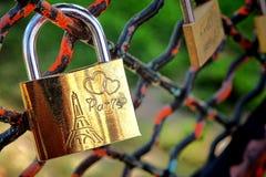Candado de los amores de la cerradura del amor de París en la cerca del parque Imagen de archivo libre de regalías