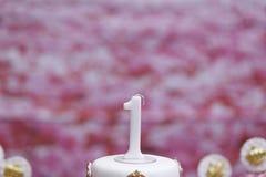 Candela di compleanno che celebra una commemorazione di 1 anno Immagine Stock Libera da Diritti