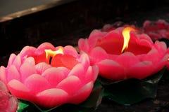 Candela di Lotus fotografia stock libera da diritti
