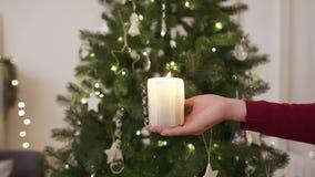Candela nelle mani davanti all'albero di Natale stock footage