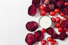 Candela, petali di rosa e cinorrodi Immagini Stock