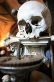 Candelabro del cráneo Foto de archivo libre de regalías