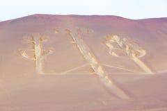 Candelabros, Perú, dibujo misterioso antiguo en la arena del desierto, parque de Paracas Foto de archivo