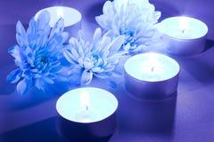 Candele blu del tè e del fiore Fotografia Stock