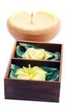Candele dei fiori Fotografia Stock