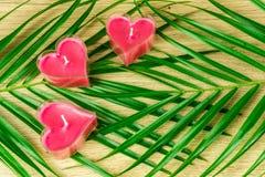 Candele del cuore con le foglie verdi Fotografia Stock Libera da Diritti