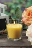 Candele della citronella per la puntura della zanzara Immagini Stock