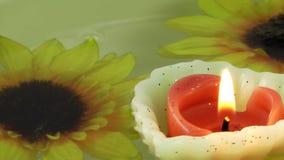 Candele di fiori e foglie sull'acqua video d archivio