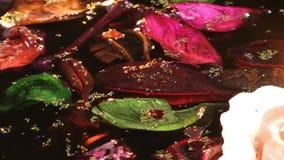 Candele di fiori e foglie sull'acqua stock footage
