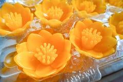 Candele di Lotus in un tempio buddista fotografie stock libere da diritti
