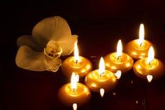 Candele ed orchidea di galleggiamento nello scuro Fotografia Stock Libera da Diritti