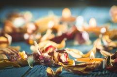 Candele gialle e plamennoi circondati dai petali asciutti dei tulipani Fotografia Stock Libera da Diritti