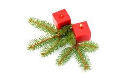 Candele rosse ed aghi verdi del pino Fotografia Stock Libera da Diritti