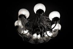 Candeliere nel web fotografia stock