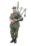 Candian Military Bagpiper. Bagpiper, Canadian military soldier in camouflage fatigues and a beret. Isolated on white royalty free stock photography