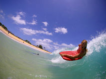 Candice Appleby Bodyboarding en la playa de Sandy Imágenes de archivo libres de regalías